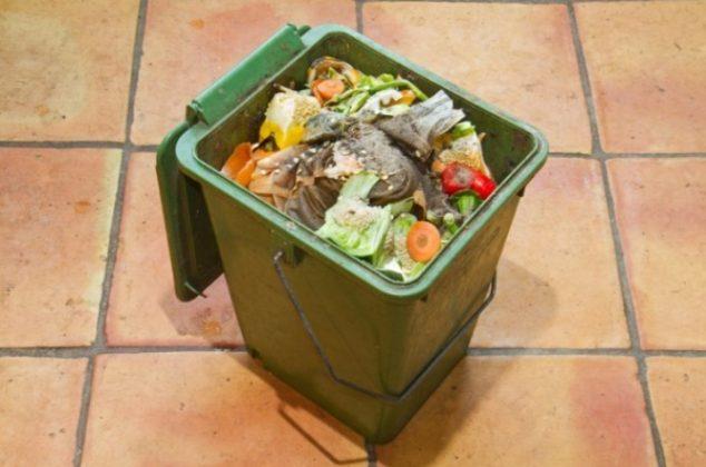 ¿Qué hacer si tienes gusanos blancos en el bote de basura de la cocina?